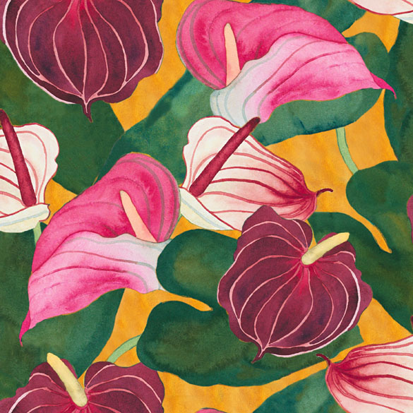 anthuriums-web